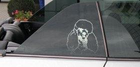Фото арт тонировки стекол авто, pixtinauto.ru