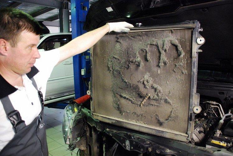 Фото загрязненного радиатора