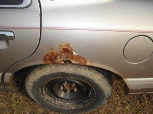 Фото коррозии кузова авто, autoshcool.ru