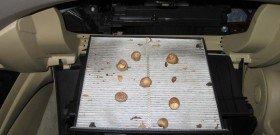 На фото - загрязненный салонный фильтр, 8thcivic.com