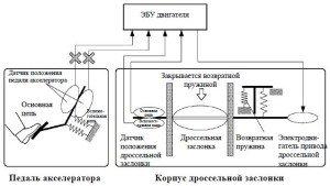 Фото - привод дроссельной заслонки, toyota-engine.ru