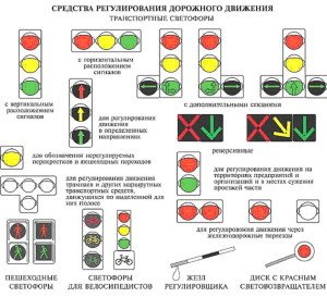 На фото - ПДД, сигналы светофора, eduedu.ru