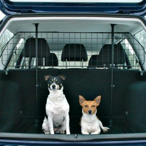 На фото - сетка для собак в багажник, zveryatam.ru