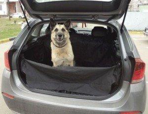 Фото специальной сетки для собак в багажник, zukix.q28.ru