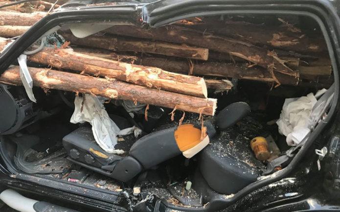 машина с брёвнами